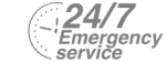 24/7 Emergency Service Pest Control in Chadwell Heath, Little Heath, RM6. Call Now! 020 8166 9746